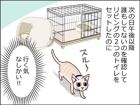 あんこ&麦kenko29a