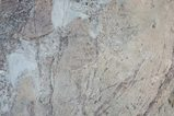 寧夏17-07_賀蘭山岩画