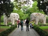 南京_明孝陵1_象の道