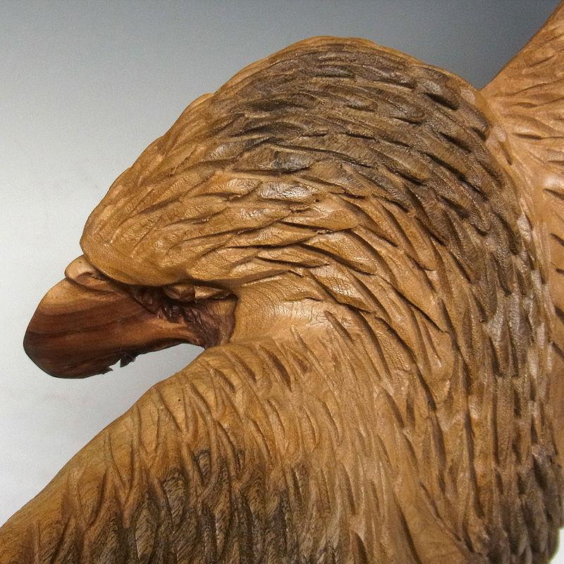 楠/樟(クス) 木彫りの鷹 幅73×高さ36cm (販売・木彫り)