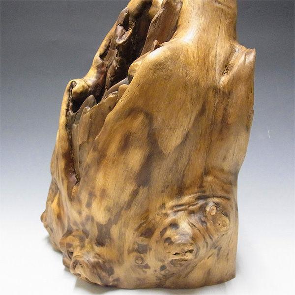 【特別プライス】楠/樟(クス) 木彫りのふくろう 高さ:37.5cm