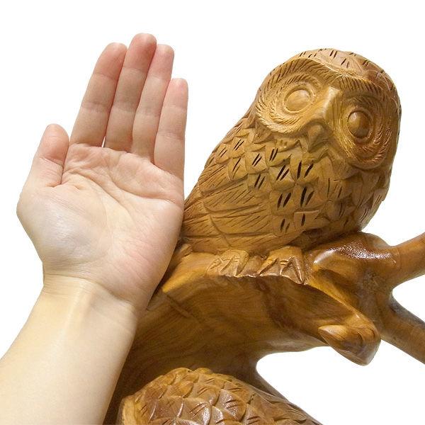 【特別プライス】杉/椙(スギ) 木彫りのふくろう 高さ:50cm 横:53cm