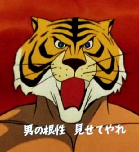 タイガーマスクの画像 p1_11