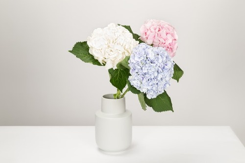 flowers-vase-decor-interior-870512