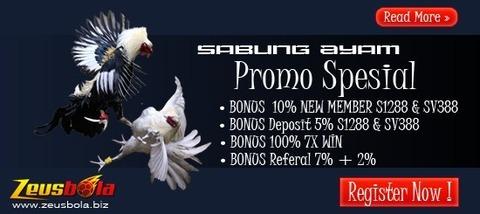 Bonus-Sabung-Ayam-7X Win