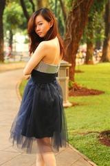 prom-dress-326967_1920