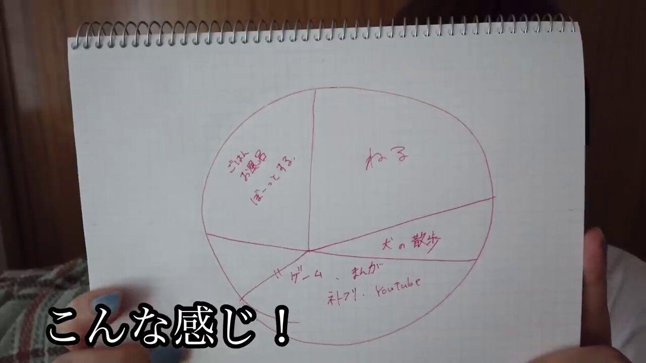 【画像】本田翼ちゃんの1日を表した円グラフ