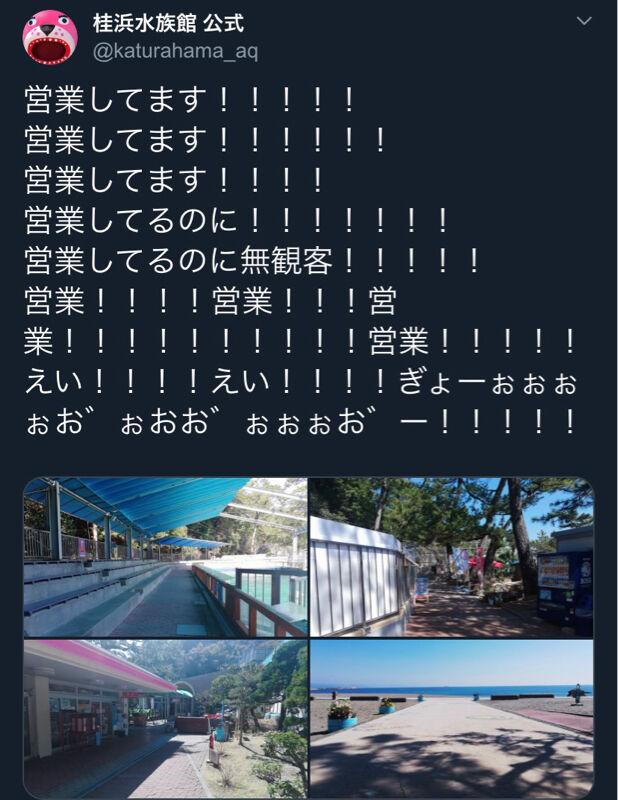 【悲報】高知の水族館さん、コロナのせいで営業してるのに客0人で発狂wwwwwwwwwwwww