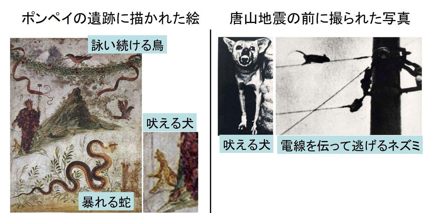 【動物の第六感を使った「地震予知」に初成功 科学がオカルトを証明する