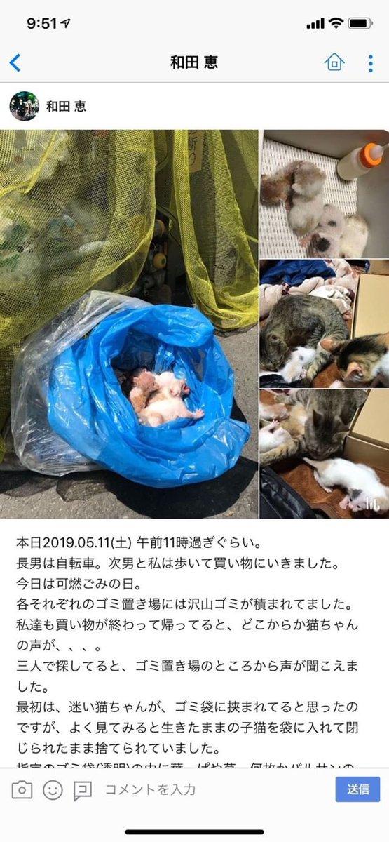 ダレノガレ明美が憤る  ごみ袋に入れられて捨てられた子猫「このような事をされる方は・・・」
