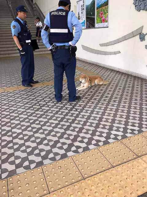 【画像】駅で警官に囲まれてるやべぇ奴いたwww