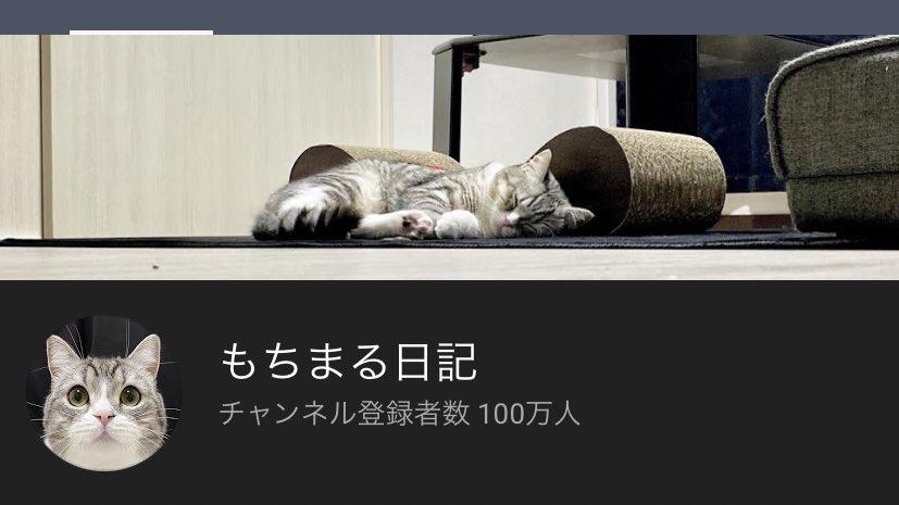 【朗報】もちまる日記、チャンネル登録者100万人達成!!!!