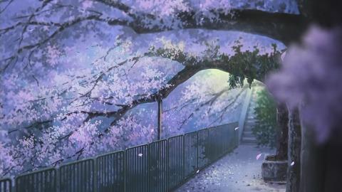 たまこまーけっと桜