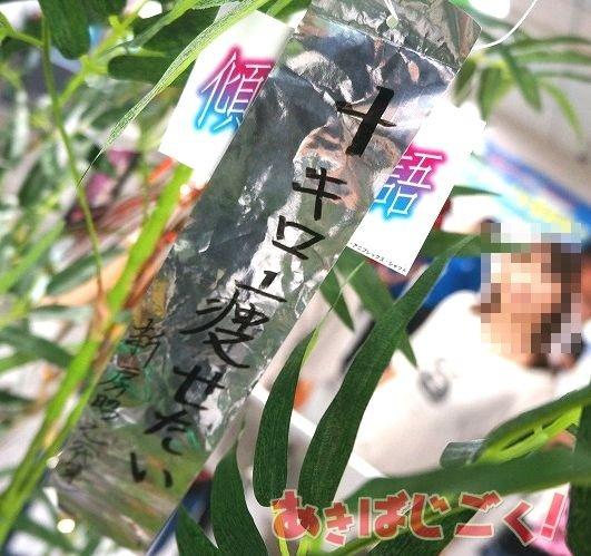 http://livedoor.blogimg.jp/s97514701/imgs/8/a/8a1940ed.jpg