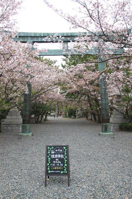 『第4回焼津神社deマルシェ』からの〜たこパ♪