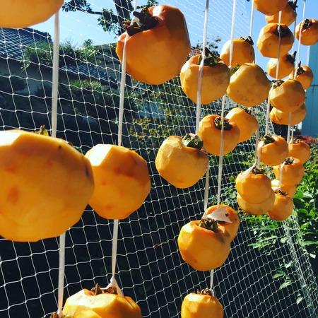 今年も父作の干し柿