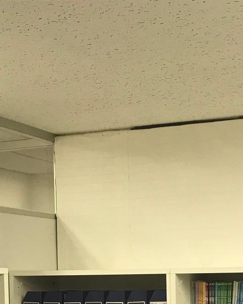後)営業棚のダンボール