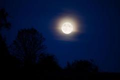 moonlight-landscape-11287160000RlIy