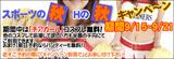 スポーツ秋  Hの秋 キャンペーン