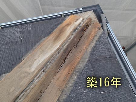棟木の腐食:築16年