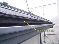 カラーベスト屋根の唐草
