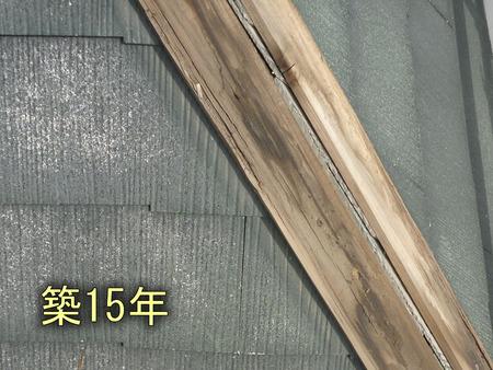 棟木の腐食:築15年