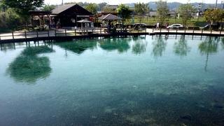 丸池湧水2