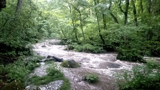 奥入瀬岩ヶ戸の瀬2