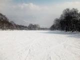 池の平温泉スキー場1