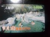 女夫渕温泉入浴券