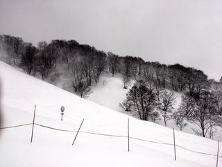 グリーンピア津南スキー場2