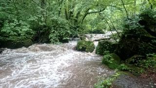 奥入瀬阿修羅の流れ3