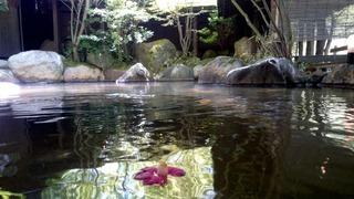 里の湯和らく野天11
