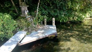 丸池湧水5