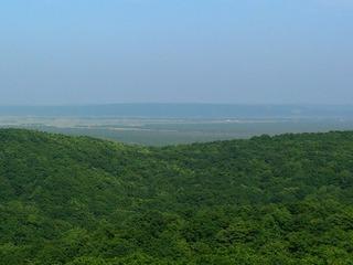 釧路湿原3