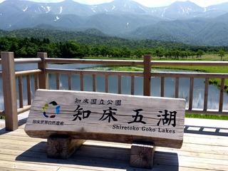 知床五湖8