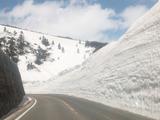 蔵王雪の壁
