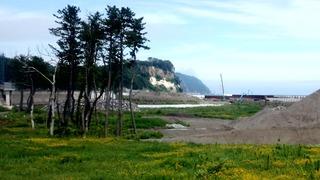 津波被害の野田
