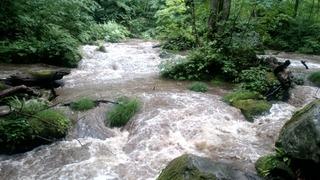 奥入瀬阿修羅の流れ2