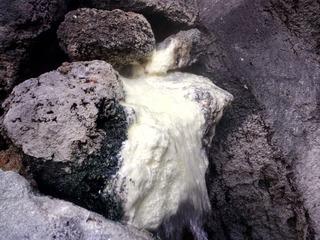 壱の井木立の湯7