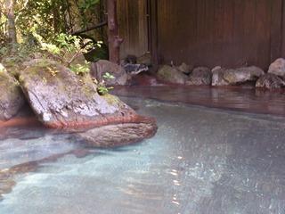 壱の井木立の湯6