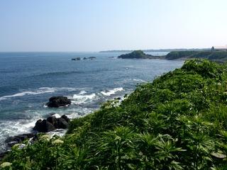 納沙布岬5