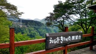 九重夢の大吊橋1