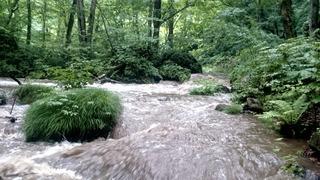 奥入瀬阿修羅の流れ1