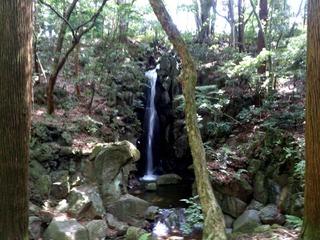 成田山12