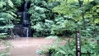 奥入瀬千筋の滝1