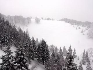 グリーンピア津南スキー場4