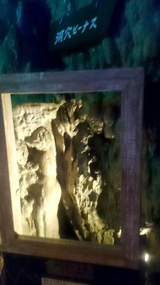 龍泉洞洞穴ビーナス