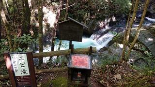河津七滝エビ滝1