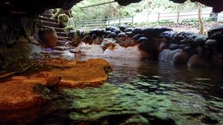 七滝温泉ホテル洞窟風呂3